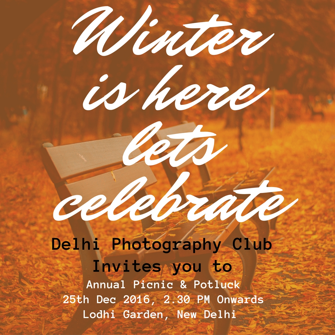 winteris-herelets-celebrate